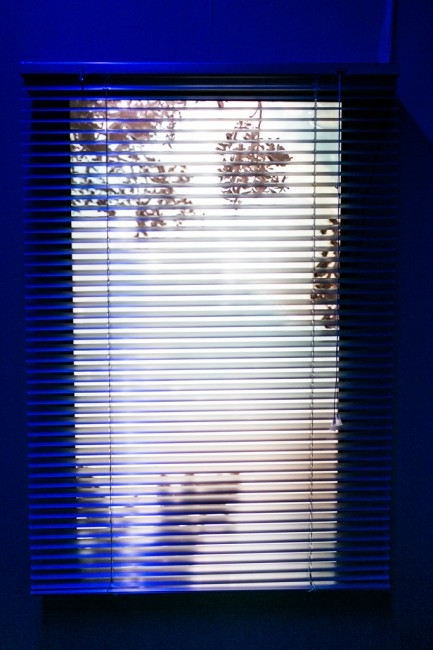"Ebony Hoorn – Black Sun Rising, 2016, mixed media installation, material : 40"" LED TV monitor , blue ray , grass , silver aluminium blinds , blue light filter. photo: Anne Lakeman"